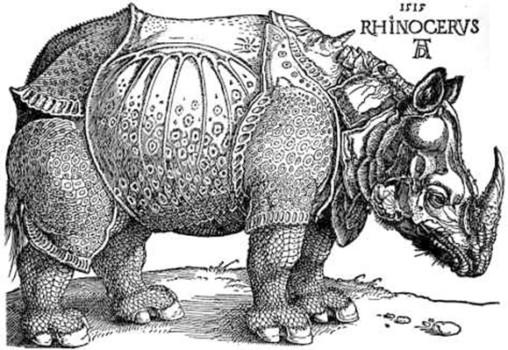 「犀(木版画)」アルブレヒト・デューラー