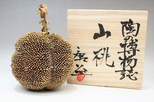 杉浦康益作 陶の博物誌「山桃」