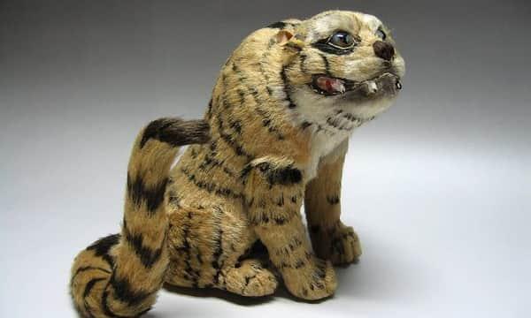 丸屋 大木平蔵作 『虎』